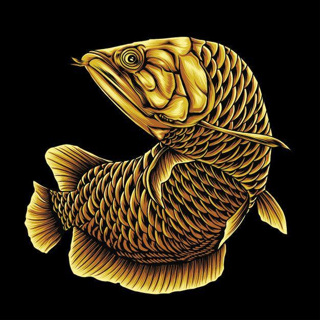 Golden Arowana Fish Fish Artwork Dragon Fish Fish Painting