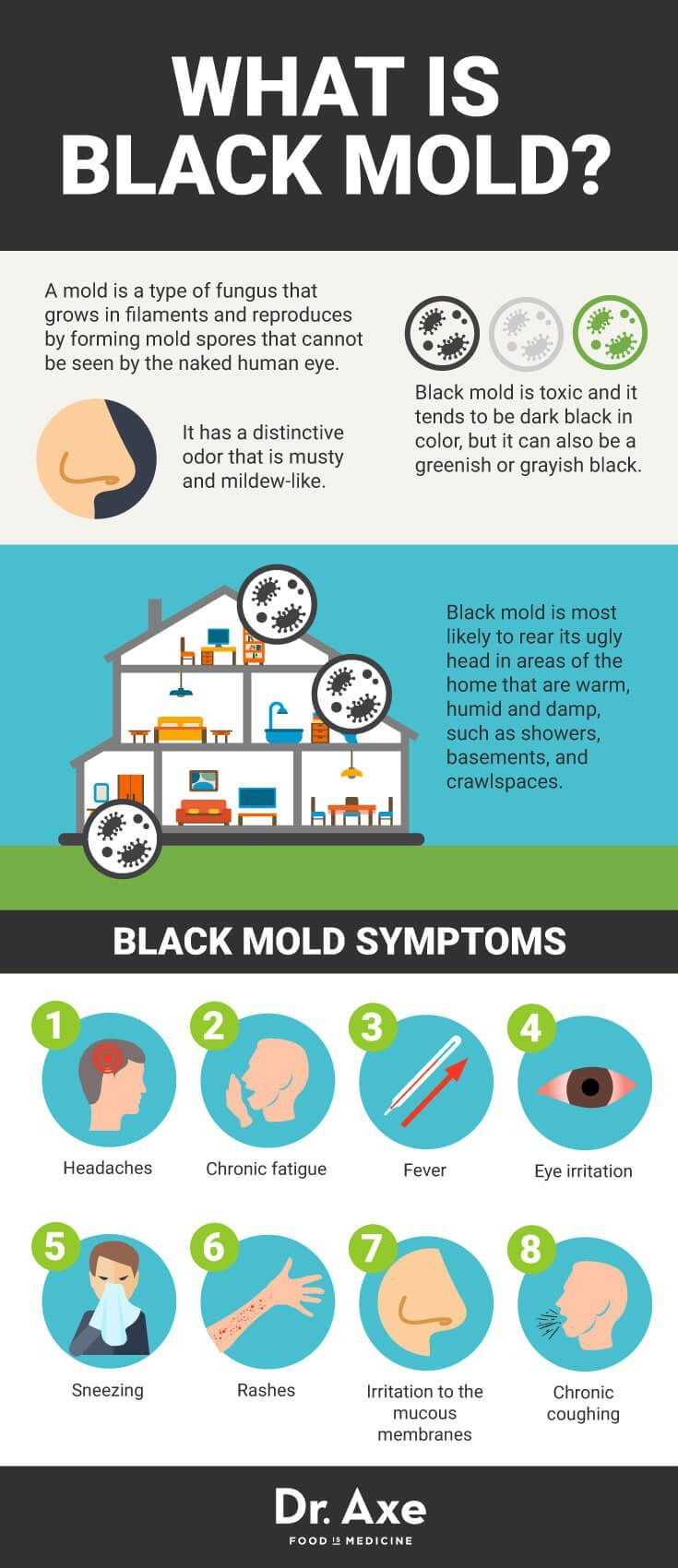 Black mold exposure and black mold poisoning can cause a wide range of health problems. Some black mold symptoms can actually be really serious.