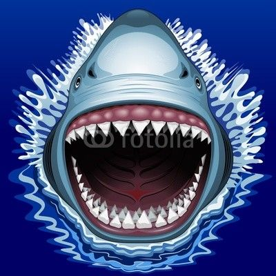 Sold! #Shark #Attack! - #Vector #illustration by #Bluedarkart - on #Fotolia   https://it.fotolia.com/id/68170424