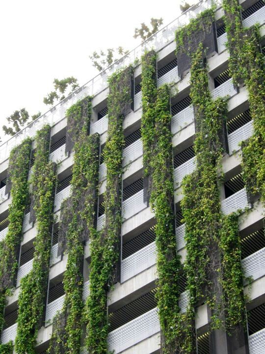 Garden Wall Facade : Best car park facade images on pinterest