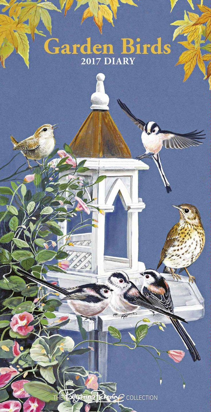 Garden Birds by Pollyanna Pickering Slim Diary 2017