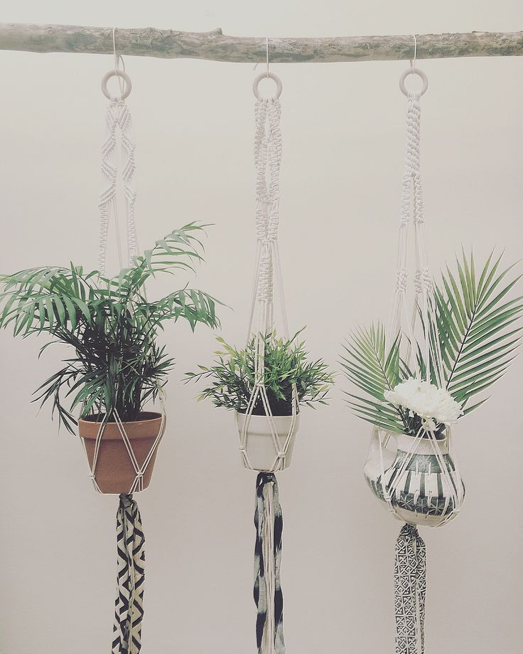 New macrame plant hangers by Macrame Adventure