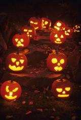 2017 halloween events in washington dc maryland and virginia - Halloween Events Maryland