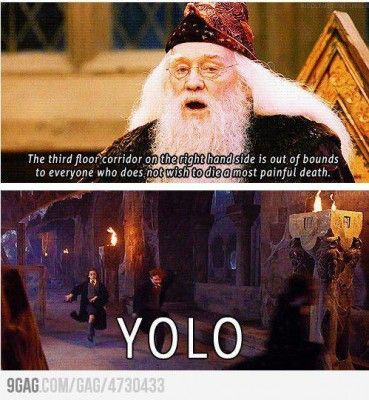 harry potter humori normally don't like the term yolo,but this is great lol