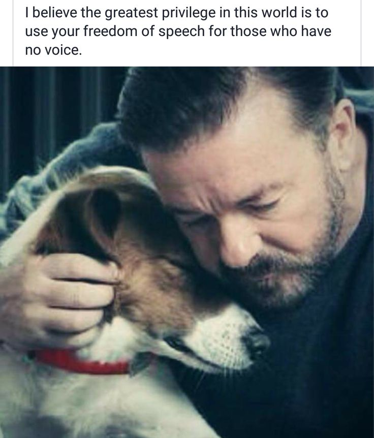 Ricky Gervais quote on speaking up for animals.