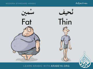 Modern Standard Arabic Adjectives