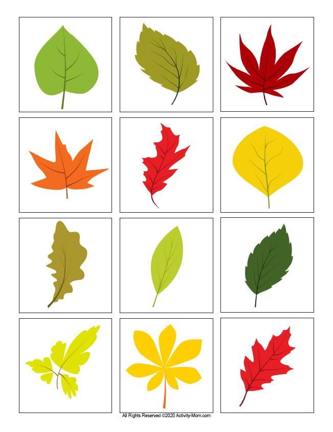 Leaf Color Matching Printable The Activity Mom Printable Leaves Leaf Coloring Leaf Printables
