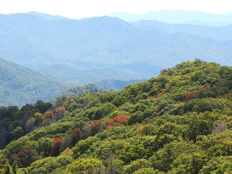 7 Best Smoky Mountain Hikes - If you're a veteran Smoky Mountains hiker, maybe you'll find a few hikes on this list that you haven't had a chance to explore yet. Check out these Smoky Mountain hikes if you're looking to try something new.