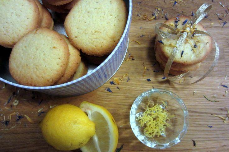 citronsmåkager