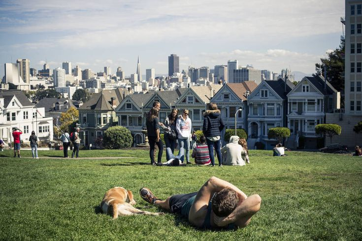 Favorite neighborhood: Alamo Square. Big buildings scrape the sky in the distance but in Alamo Square, little houses all lean prettily in little rows. SF locals love it for its serene environs in the midst of city living.