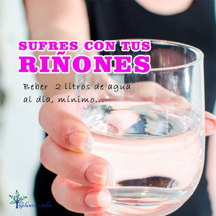 Beber agua pura o infusiones de cola de caballo, sin ningún edulcorante...