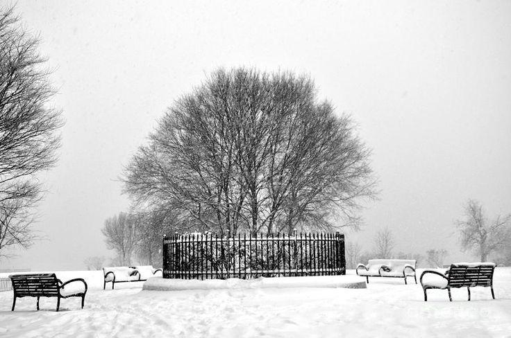 Penn Treaty Park Circle Photograph