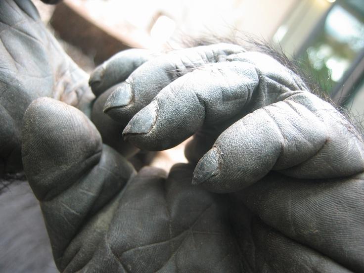 Binti's hand