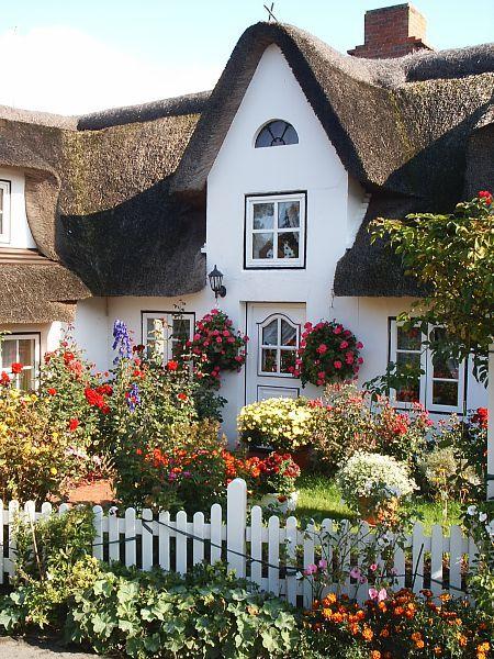 Amrum, North Sea, Germany