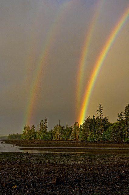 4, count em...4!!!: Amazing, Quadrupl Rainbows, Awesome, Double Rainbows, Pictures, Places, God Promi, Photography, British Columbia
