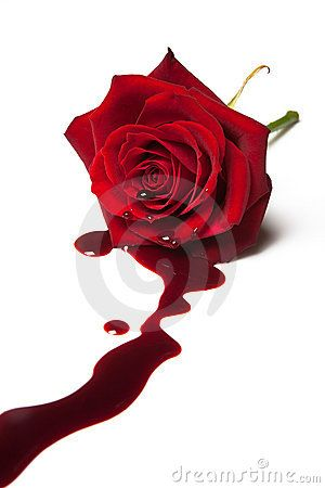 Bleeding rose by Photowitch, via Dreamstime