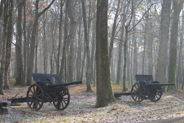 World War I canon at the Belleau Wood Memorial #France #Paris #DayTrip #Battlefield #Tour #ParisTrip #Bus #Tourism #Tourisme #Memorial #Cemetery #WWI #Centennial #WorldWar