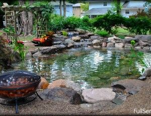 14 best images about natural garden ponds on pinterest for Making a koi pond