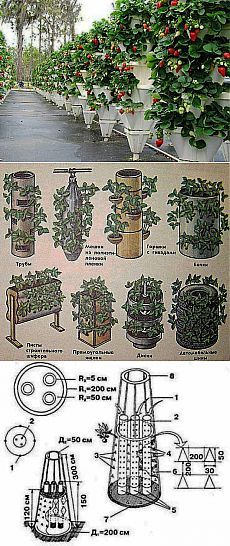 Вертикальное выращивание растений — как сделать вертикальные грядки   Умелые ручки