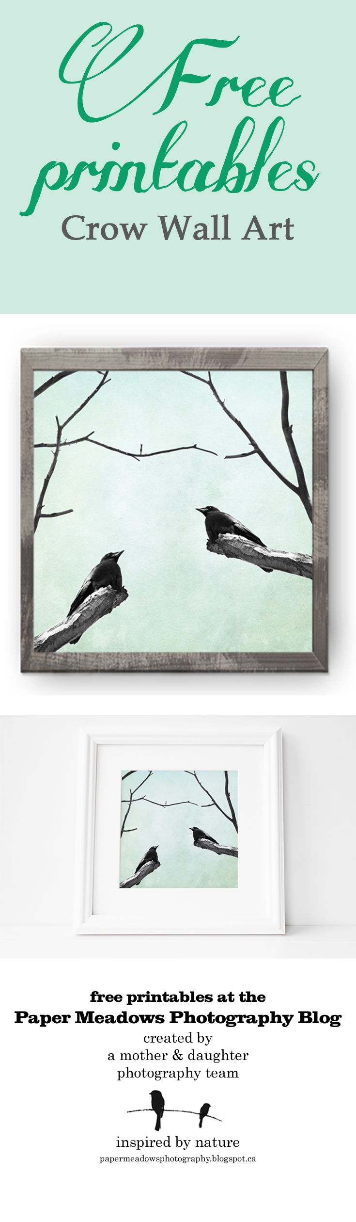 Love crows?  A touch of blue and dramatic black birds; a wonderful way to bring nature indoors. A free printable summer wall art print perfect for the cottage!