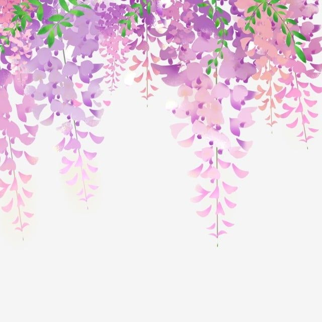 Wisteria Flowers Vine Hand Painted Lace Purple Bouquet Lace Cartoon Png Transparent Clipart Image And Psd File For Free Download In 2020 Flower Art Painting Cartoon Flowers Watercolor Flower Background