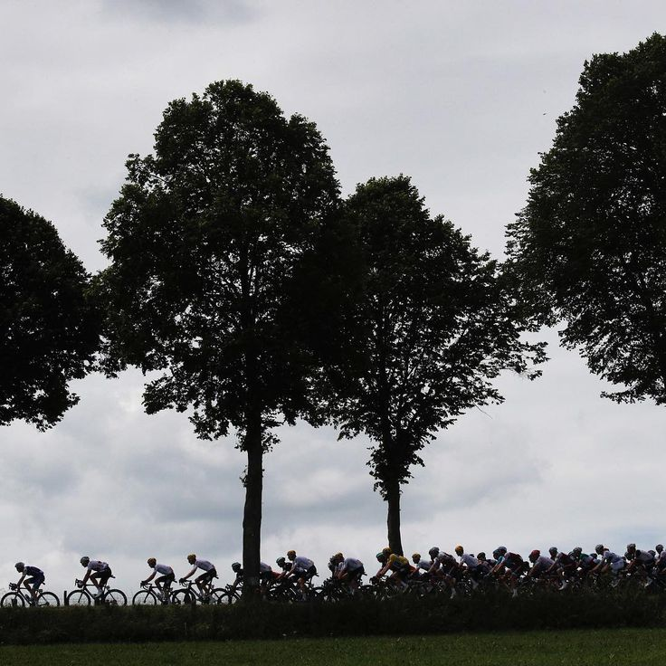 The pack is silhouetted as they ride through Luxembourg during the third stage of the Tour de France, over 212.5 kilometers (132 miles) with the start in Verviers, Belgium and finish in Longwy, France, on July 3, 2017. ⠀ ⠀ Photograph by Christophe Ena—@ap.images