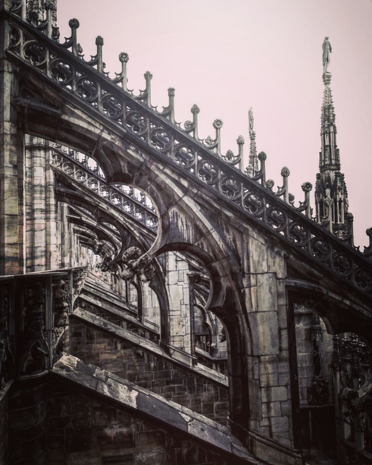 Duomo di Milano #cathedral #gothic