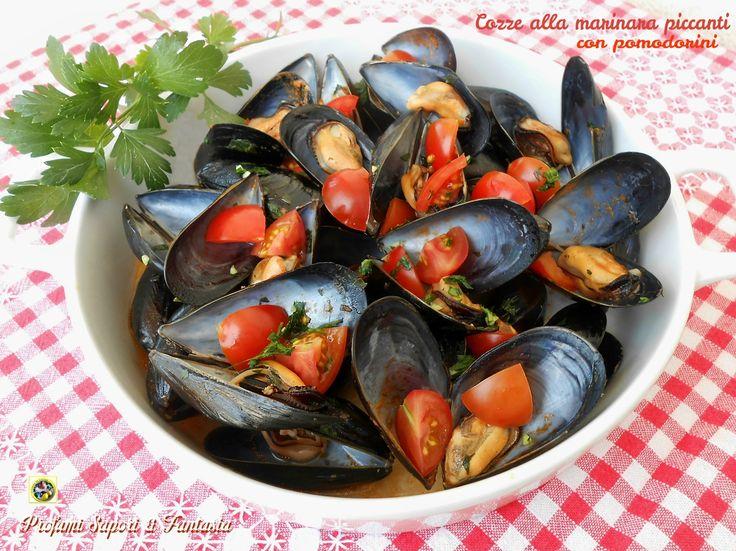 Servite come antipasto o secondo piatto le cozze alla marinara piccanti sono e saranno sempre un modo superlativo per gustare questi frutti di mare.