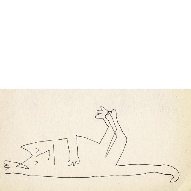 Saul Steinburg cat