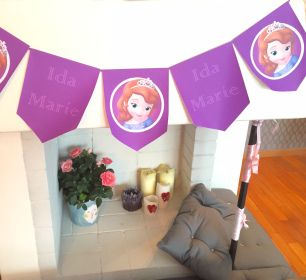 DIY bursdag, Prinsesse Sofia bursdag.