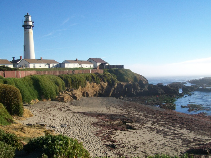 I took this at Pigeon Point Lighthouse near San Francisco Ca. I love the coast!!