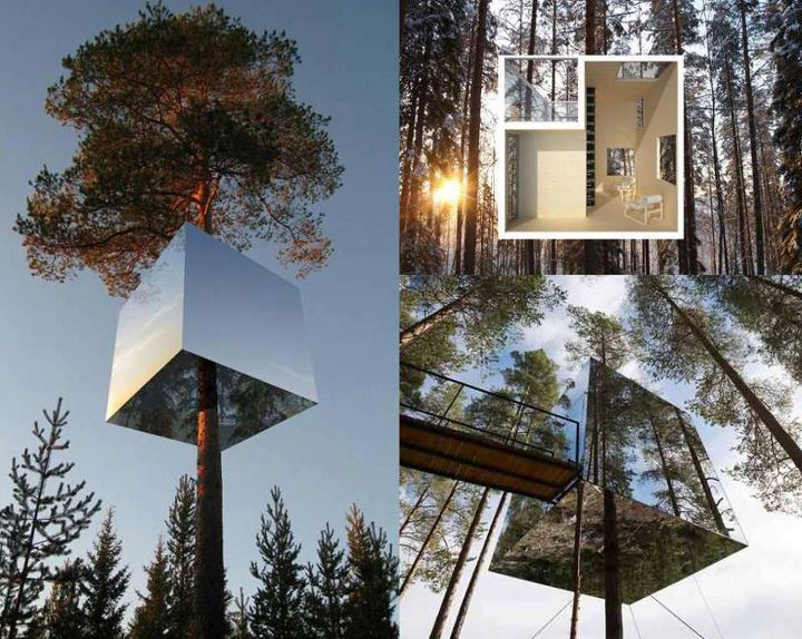 Treehouse Masters Mirrors mirror cube tree house hotel | tree houses, sweden and house