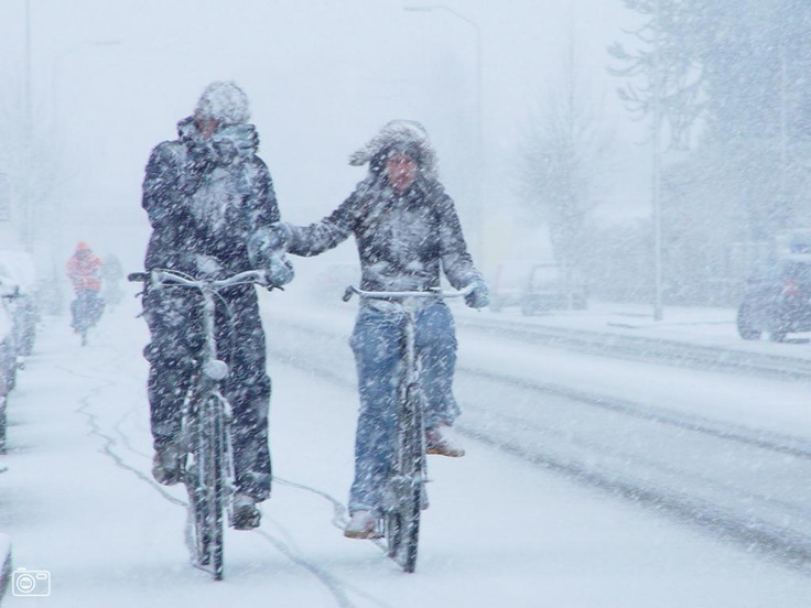 """Weer of geen weer, wij gaan op de fiets. - [another winter pin from the Netherlands - Thanks to pinner Tam Mid, the above means """"good or bad weather, we travel with bike!""""]"""