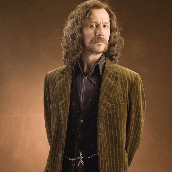 Sirius Black Harry Potter Characters Harry Potter Sirius Sirius Black Gary Oldman