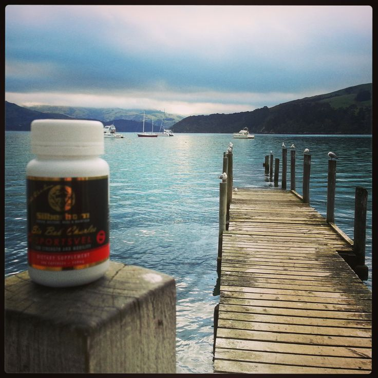 Silberhorn Sportsvel  Velvet antler capsules are superior quality natural velvet antler supplement made from whole stick New Zealand Velvet antler which is used by 100,000's of men and women all over the world to support joint health and mobility, for today's active life styles please visit us at www.silberhorn.co.nz and keep in touch  #velvetantler #silberhorn #sportsvel  #velvetantlercapsules #jointhealthsupplements #jointhealthproducts #jointpainsupplements #deervelvetcapsules