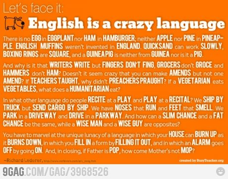 true, trueThoughts, Schools, Quotes, Hard Time, Crazy Languages, Learning English, Friday Funny, English Languages, Teachers