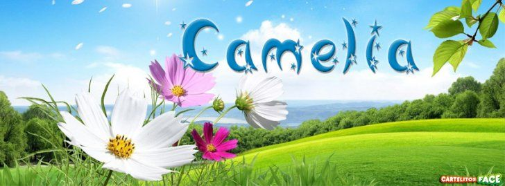 Camelia - Portadas con nombres para Facebook