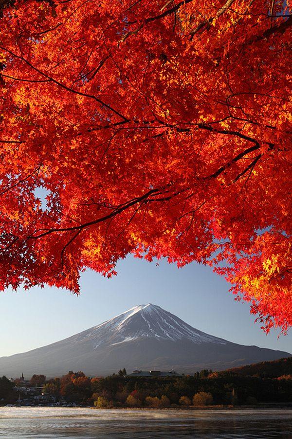 Vista en Otoño del Monte Fuji en Japón. Considerado sagrado desde la Antigüedad, les estaba prohibido a las mujeres llegar a la cima. Actualmente es un conocido destino turístico, así como un destino popular para practicar el alpinismo.