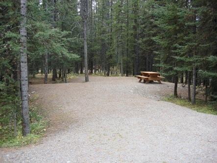 Typical campsite in Boulton Creek Campgound