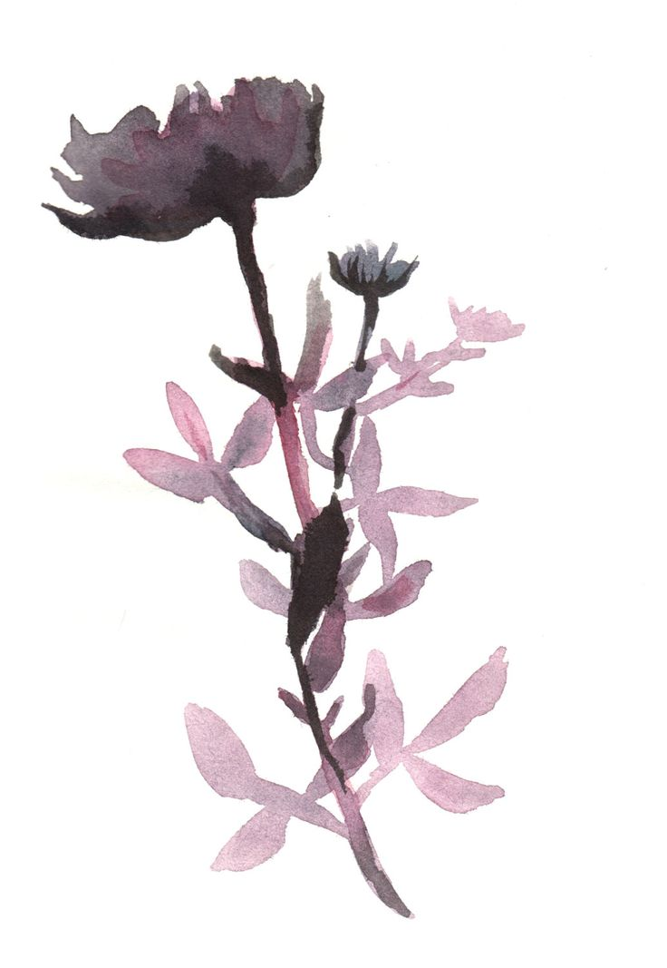 Purple Flowers by Susanne Riber. A print I made from original watercolor painting, and which will enhance both home decor and professional rooms.
