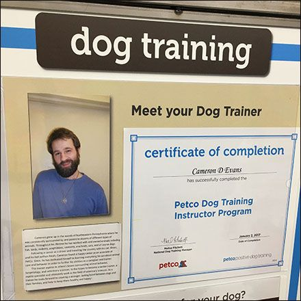 Personalized Dog Training In Store At Petco Fixtures Close Up Dog Training Dog Person Petco