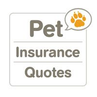 Is your four-legged friend a mixed breed? Get pet insurance quotes for your dog from all the top companies.