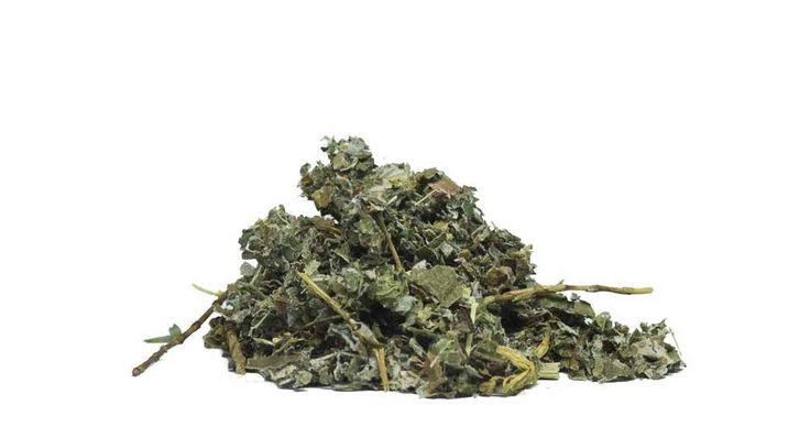 Modrý květ - Detoxikace organismu