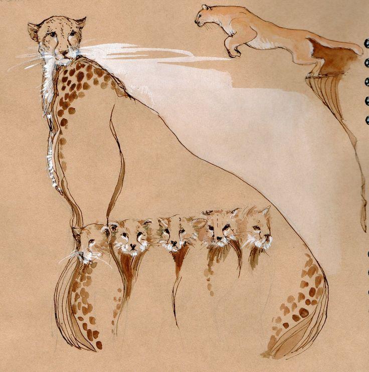 ghepardo e puma