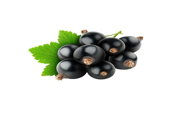 Blackcurrant Amazing Foods For Improving MemoryHere is one more fruit that helps in enhancing the functioning of the brain. Like milk and calcium, blackcurrant also contains vitamin C. According to physicians, vitamin C improves mental agility and increase the power for protecting age-related degeneration. .