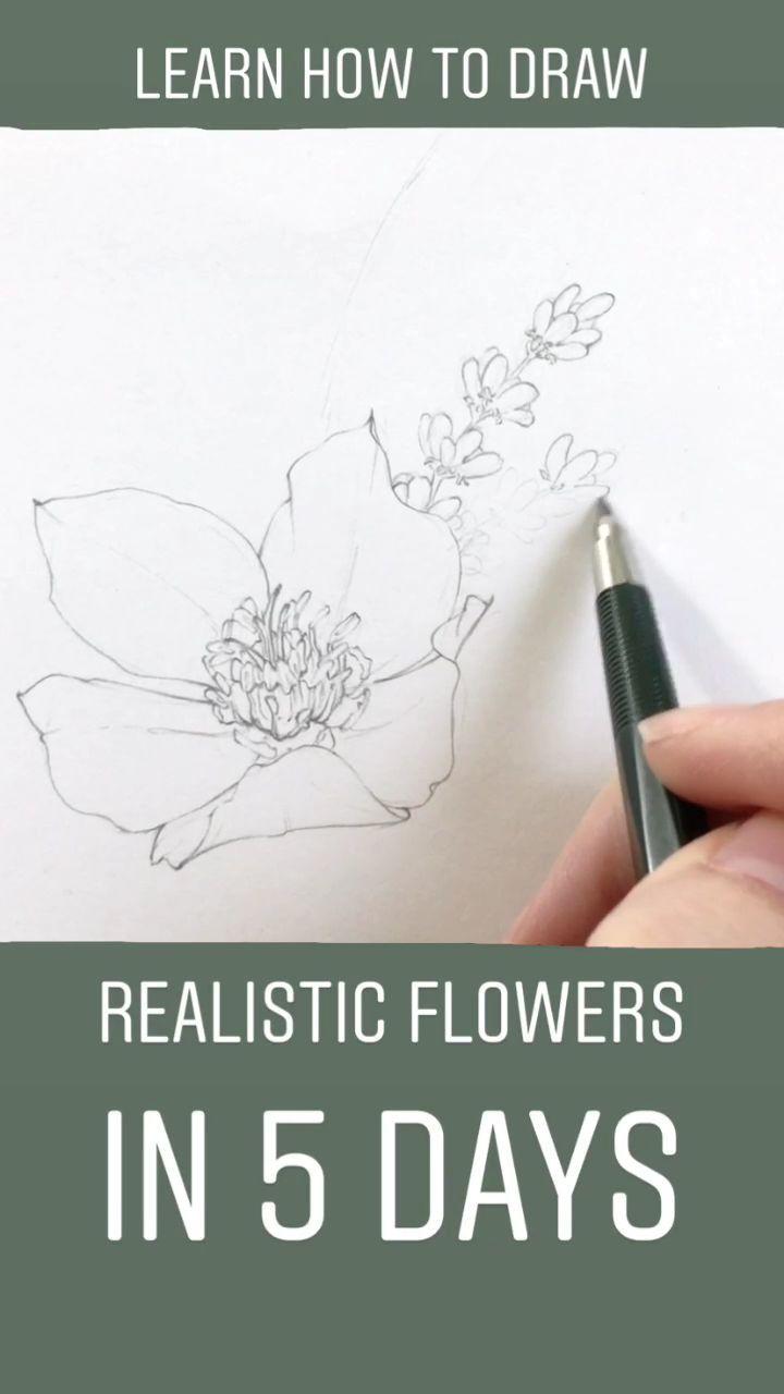 Lernen Sie, realistische Blumen in weniger als einer Woche zu zeichnen! Begleite mich und Hunderte