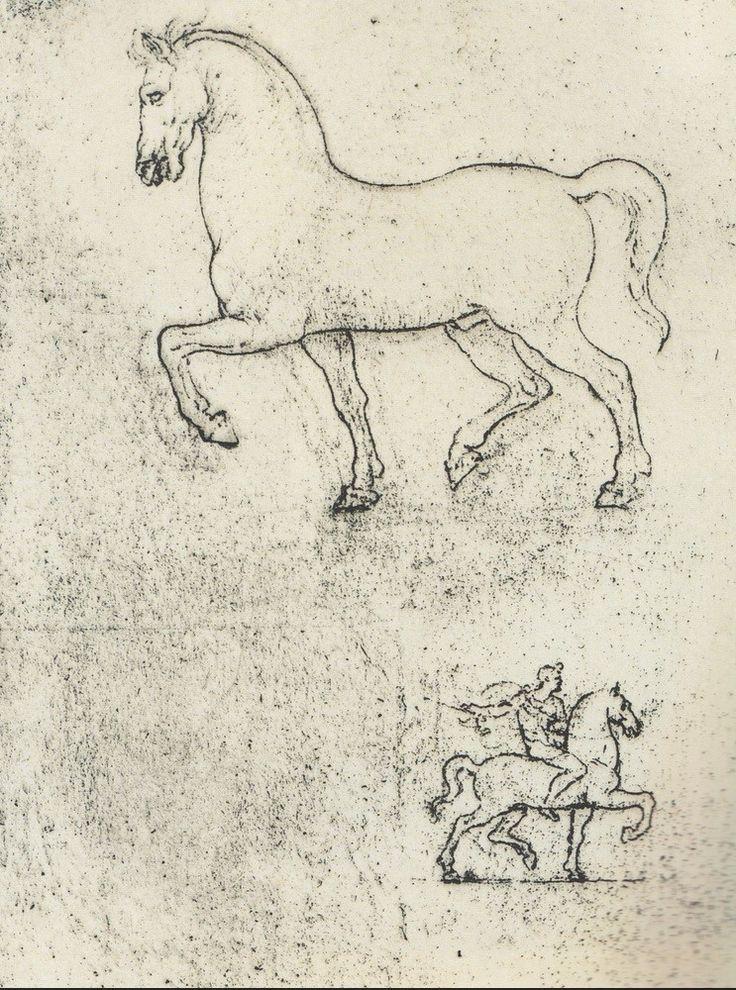 Sketches of horses, by Leonardo da Vinci