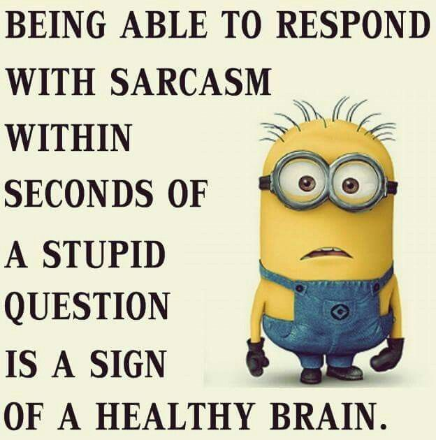 Sarcastically Funny Meme : Images about sarcasm on pinterest