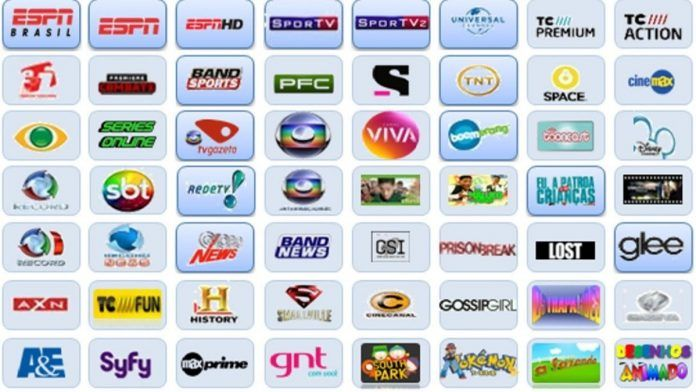 You Searched For Globo Tv Ao Vivo Tv Ao Vivo