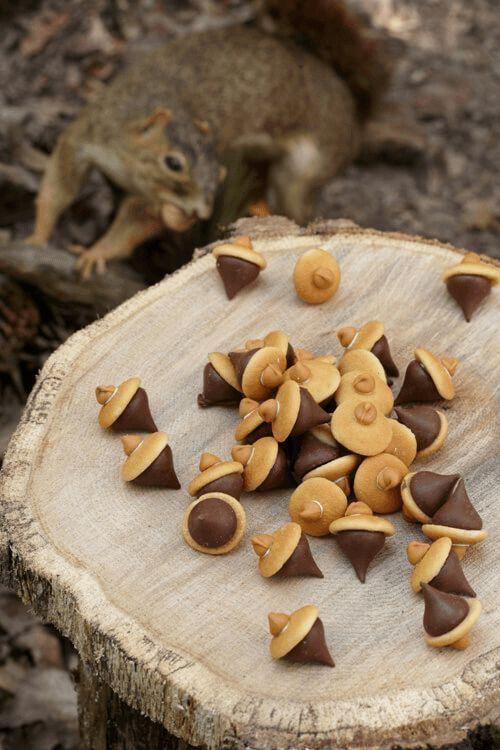 25+ Woodland Baby Shower Themen-Ideen (Dekorationen, Spiele & mehr) – Rebecca  € …
